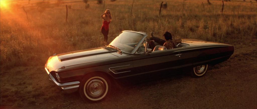 Wild At Heart Ford Thunderbird